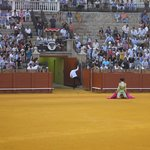 The first matador starting the bull fight