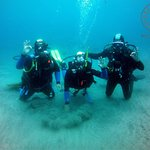 Azores Sub Dive Center Foto