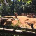 ภาพถ่ายของ Riverbanks Zoo and Botanical Garden