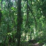 Billede af Bahia Aventuras