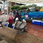 Photo of Santa Cruz Fish Market