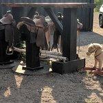 Smokin' Hot Chip Truck Resmi