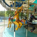 Jacob's Son and Chocolate, horses on the carousel at Krape Park in Freeport.