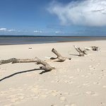 Nairn beach May 2018