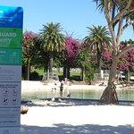 urban sandy beach by bougainvillaea walk