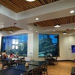 صورة فوتوغرافية لـ Shark Reef Cafe