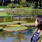 Φωτογραφία: Jardim Botanico Plantarum