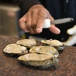 Oysters Being Served