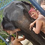 Just like a giant car wash. The elephants loved it almost as much as I did =)