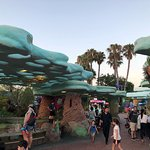 SeaWorld San Diego Foto