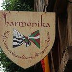 Foto di Harmonika