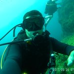 Photo of ABC Dive Club
