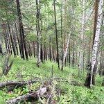 Фотография Большая Байкальская тропа