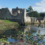 Midway Ireland Tours照片
