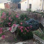 Photo of La Bassa