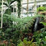 Путешествие в Тропический лес в Москве