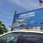 Florida Keys Aquarium Encounters resmi
