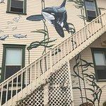 Foto di The Whale Museum