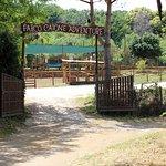 Bilde fra Parco Catone Adventure