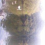 St. James's Park Foto
