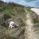 Φωτογραφία: Ouistreham Beach
