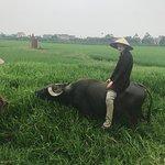 Vietnam Farm Trip - Private One Day Tours Foto