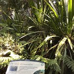 Photo of Australian National Botanic Gardens