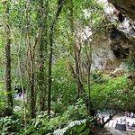 Фотография Caves of Drach