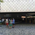 Bild från Lisbon Oceanarium