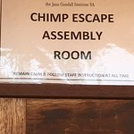 Sign to instruct visitors about where to gather in the event that a chimp escapes.