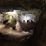 Photo of Naracoorte Caves National Park