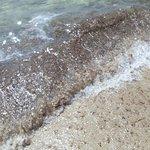 Foto de Spiaggia Bacino Grande