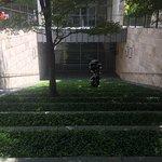 Outdoor garden grass terraced stairs