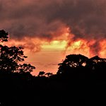 Monteverde Wild Hikes Twilight Guided Walks