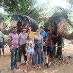 Sri Lanka Tours mit Dinesh Foto