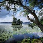 Sigtuna ligger vid en sjö som heter Garnsviken (palakpakhan @instagram)