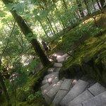 Photo of Portland Japanese Garden