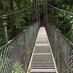 Foto van Mistico Arenal Hanging Bridges Park