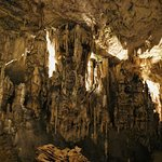 Photo of Postojna Caves