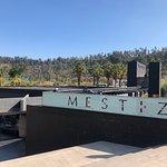 Foto de Mestizo