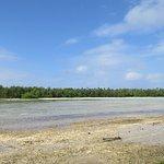 Photo of Muri Lagoon