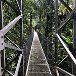 Foto de Mistico Arenal Hanging Bridges Park