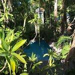 Tropical Inn Photo
