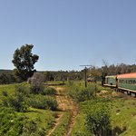 Hotham Valley Tourist Railway의 사진