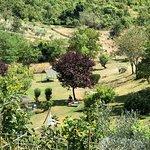 Poderi Val Verde - Chianti Cooking Lesson의 사진