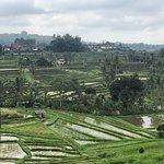 Фотография Legian Driver Bali