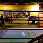 Foto Muhammad Ali Center