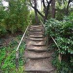 Национальный ботанический сад Грузии