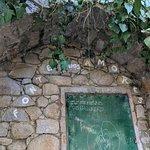 صورة فوتوغرافية لـ Caldas de Monchique