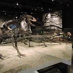Photo of Natural History Museum of Utah